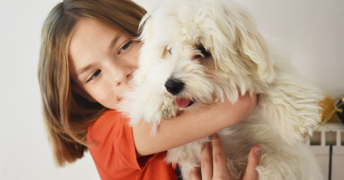 Est Ce Une Bonne Idee D Adopter Un Animal En Periode De Confinement